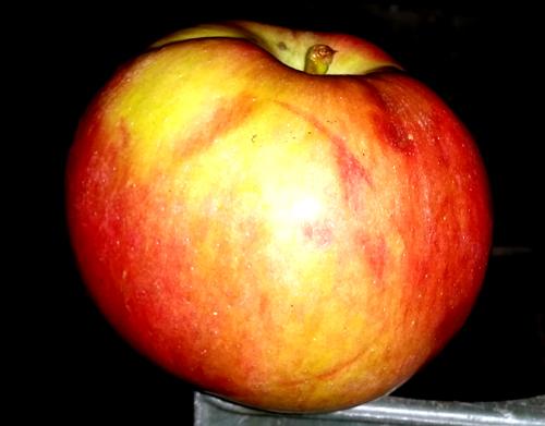 Jabuka može pomoći u lečenju nekih bolesti i tegoba