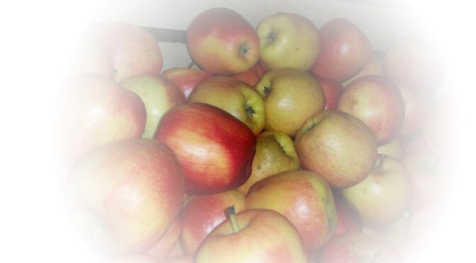 Jabukovo sirće je fantastičan lek